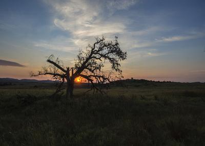 Sunrise, Wichita Mtns NWR, Indiaho