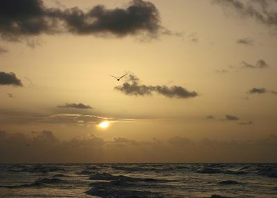 Sunrise, Galveston Island, TX