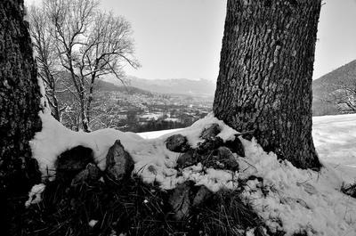 la bella terra lucana - Tramutola