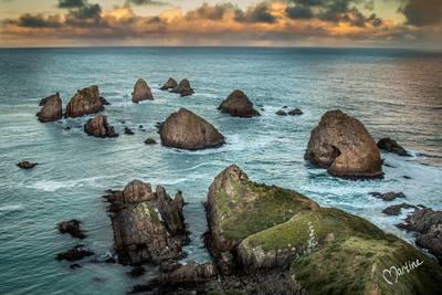 Nugget Point - NZ