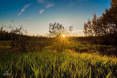 Elk Island National Park Sunset